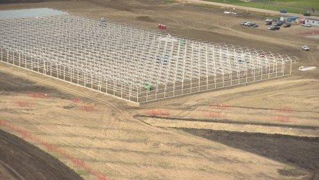 Edmonton airport area banking on massive new marijuana facility taking off