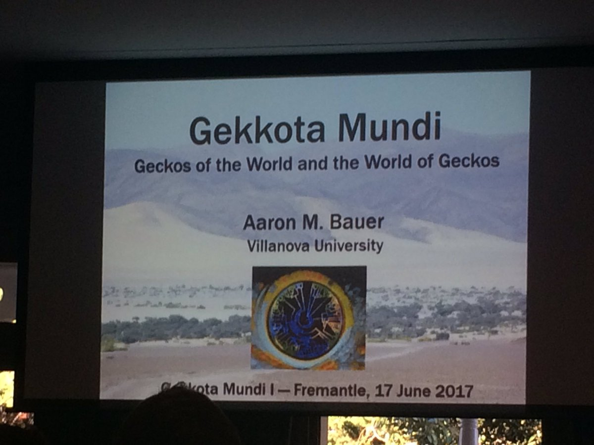 The first world #gecko conference is on. #herpetofauna #reptiles <br>http://pic.twitter.com/4bcE5YJxXY