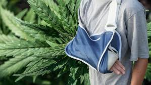 The Medical Minute: Cannabis Helps Heal Broken Bones, New Study Shows