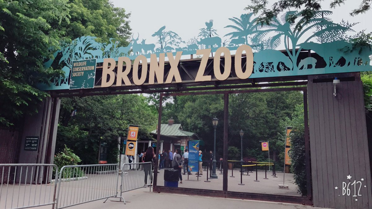 Brew at the Zoo - Bronx Zoo
