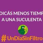 UnDiaSinFiltro