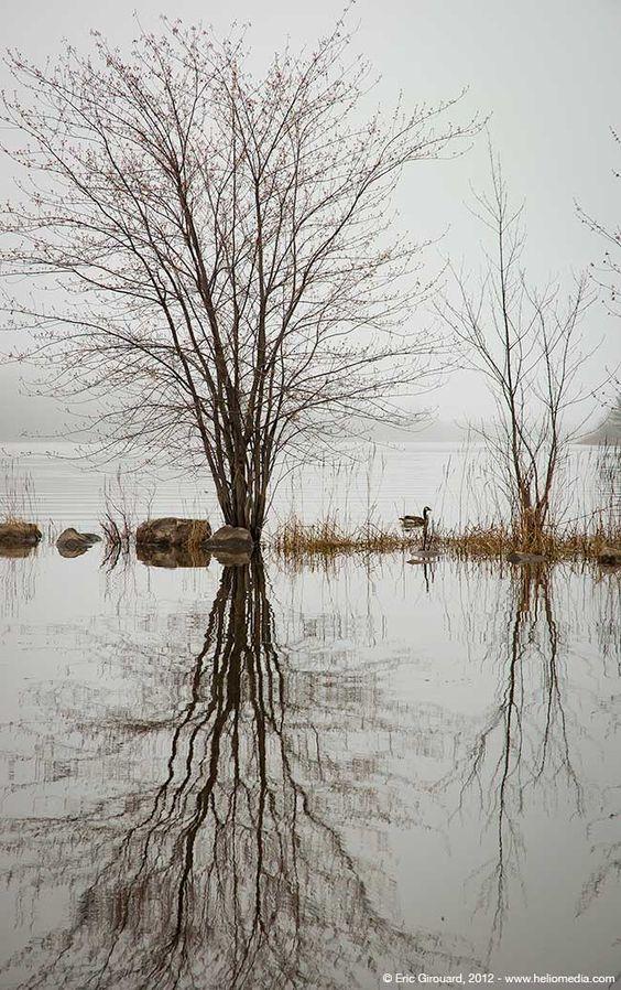Our lovely Hudson....Jack Layton Park. #Hudson #Quebec #Winterwonderland  https://www. facebook.com/pg/barbarafarr enart &nbsp; … <br>http://pic.twitter.com/SSNgz6PUsZ