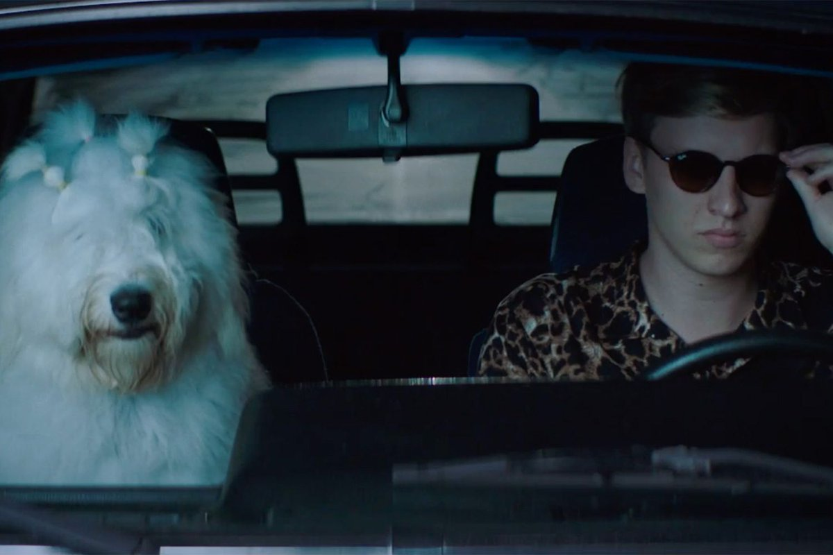 Dork on twitter mary the dog has released a video for mary the dog has released a video for georgeezras new single dont matter now httpsreaddorknewsgeorge ezra dont matter now video ccuart Gallery