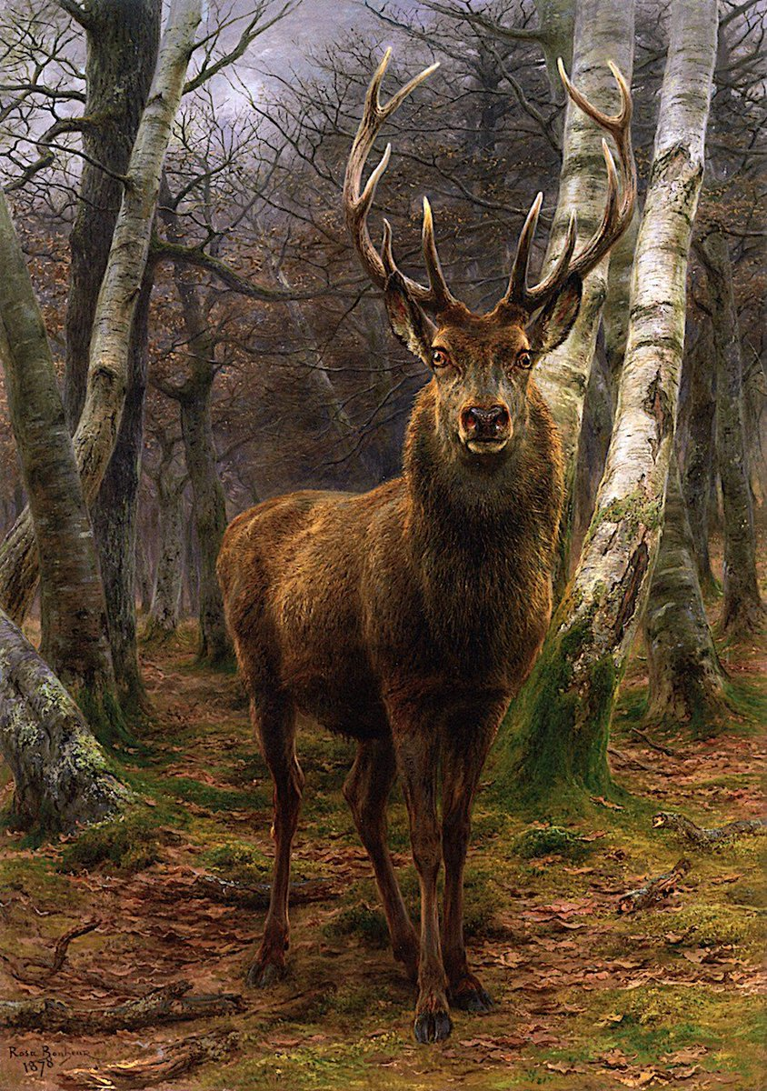 Rosa #Bonheur &quot;King of the Forest&quot; 1878 #art<br>http://pic.twitter.com/PhxufPQ5pI