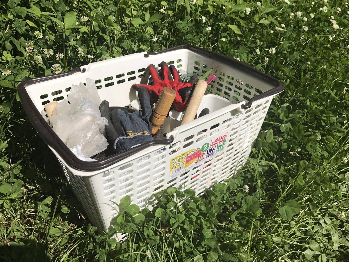 test ツイッターメディア - 畑で作業する際は、スーパーマーケットのカゴ的なものがあると便利!雑多なモノを放り込んで持ち歩けるのはもちろんのこと、板(スノコなど)を乗せるとテーブルにもなります????私は #ダイソー で400円で買いました? #家庭菜園 #アウトドア https://t.co/MG21yn3oAT