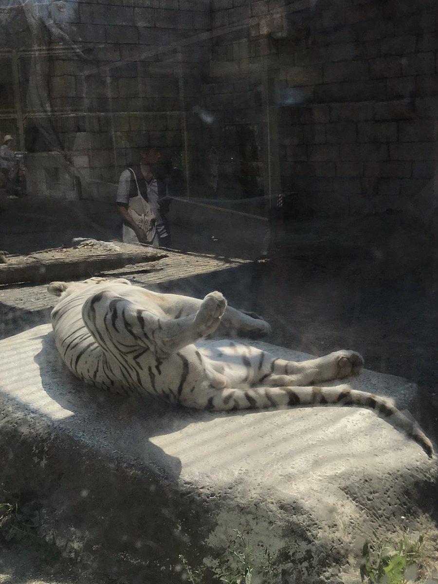 東武動物公園 営業時間