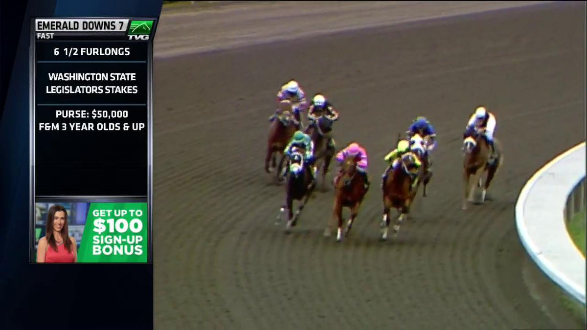 HAYNESFIELD had a great weekend! 2 stakes winners, 2 different surfaces!