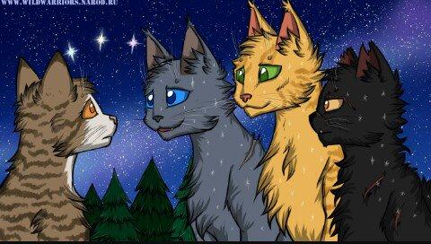 Коты воители огнезвезд фото - e6a