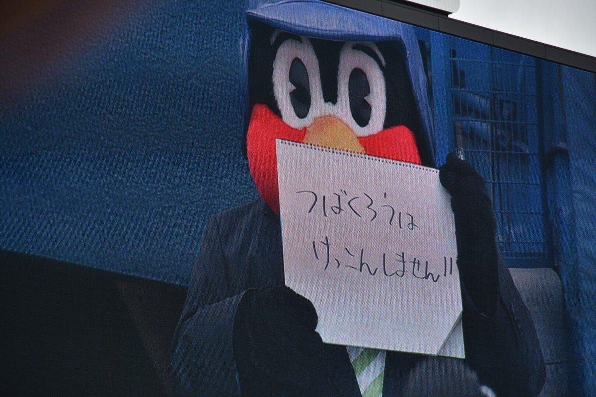 つばくろうは けっこんしません!! #つば九郎 #結婚報告