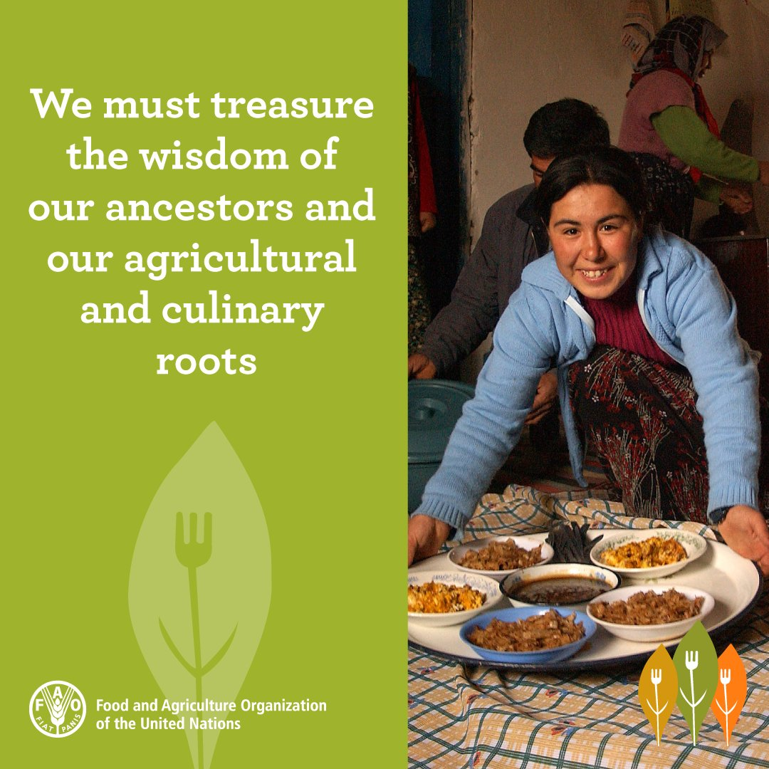 On Sustainable #Gastronomy Day, tell us what are your favourite traditional recipes   @UNESCO<br>http://pic.twitter.com/vN6gxYinUW