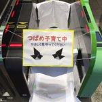 元気に巣立つといいな!鎌倉駅で改札機を閉鎖してツバメの子育てを見守る!