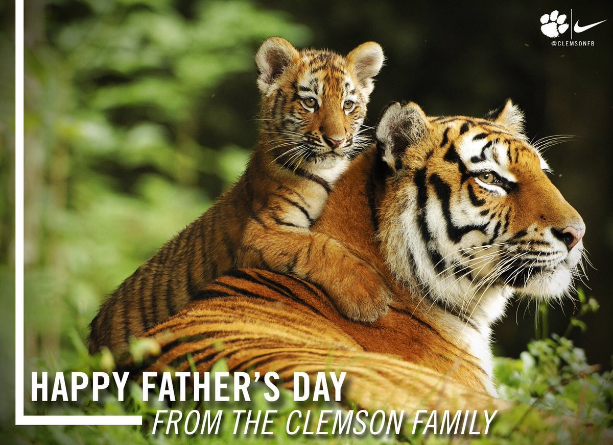 From the #ClemsonFamily to yours, Happy Father's Day! 🐅🐾 https://t.co/...