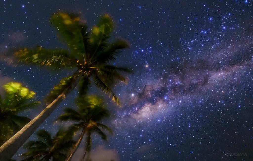 南の島の潮風の夜、頭上にはヤシの木と我が銀河中心方向の姿。 写真中央の赤っぽい星がアンタレス。さそり座は日本で見るのと逆さになっています。 20秒間光を集めた写真で、肉眼で見るよりもはるかに多くの星、天の川の色が写っています。(タヒチ、ボラボラ島にて撮影)