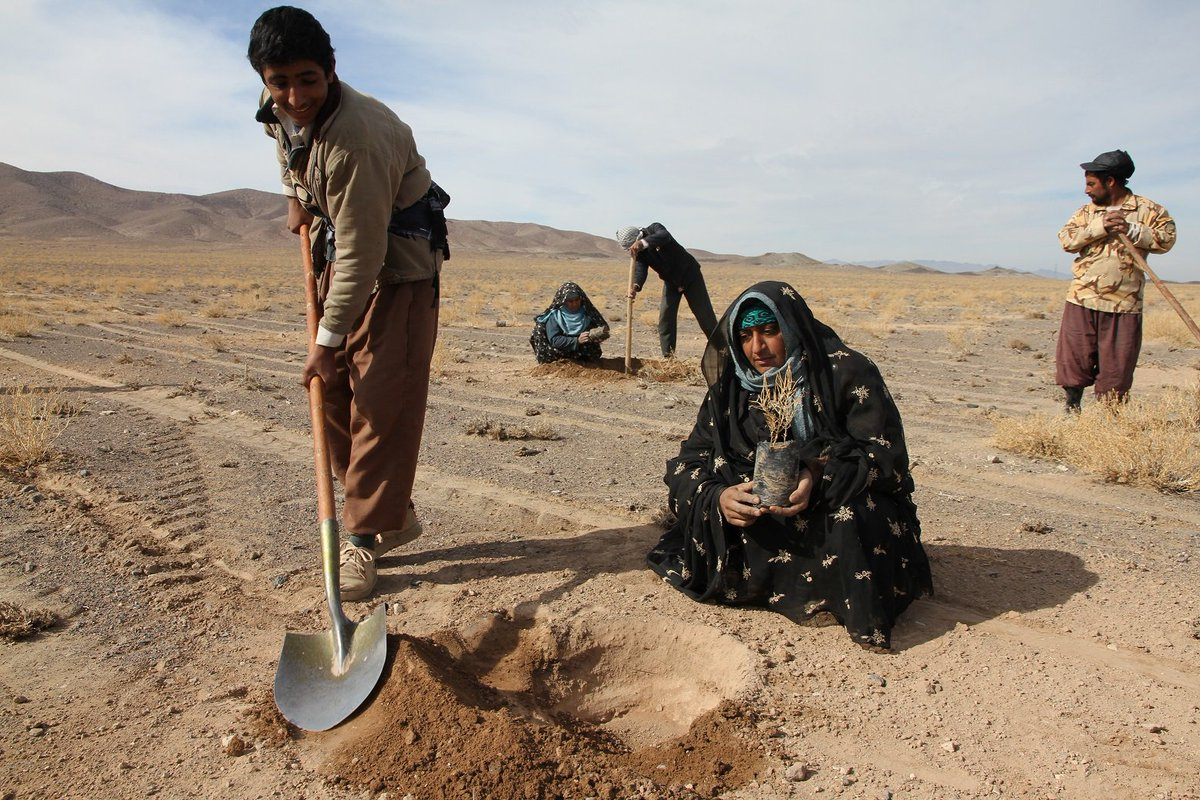 #Iran and #UNDP strengthen efforts to combat #desertification:  https:// goo.gl/wx4Ari  &nbsp;   #WDCD2017<br>http://pic.twitter.com/BYijWEUPCD