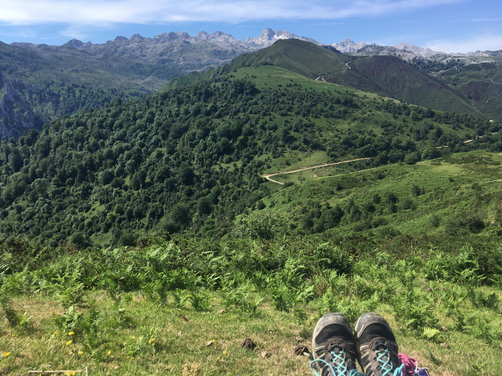 Today&#39;s lunch spot #PicosDeEuropa <br>http://pic.twitter.com/QG9orTDBSZ
