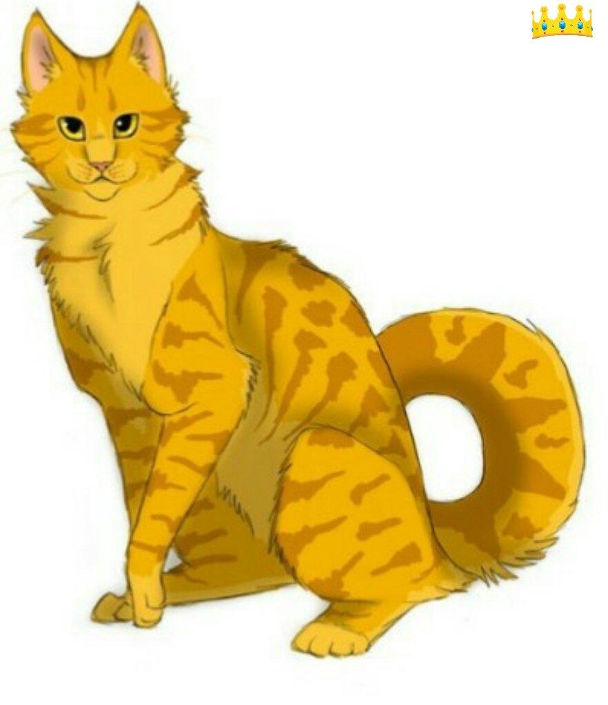 Коты воители огнезвезд фото - 2a74