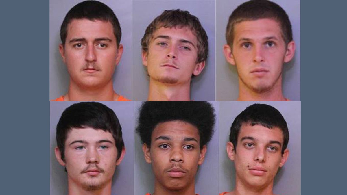 6 charged in Lakeland cow thefts; 8 cows still missing