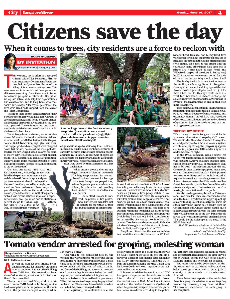 save trees article