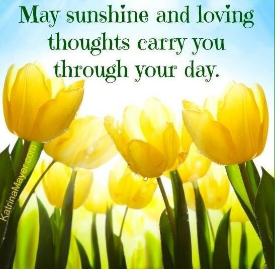 When we face #local &amp; #global challenges, channel any fear &amp; sadness into #love &amp; #hope  #thankyou to all who make sun shine in our &#39;s<br>http://pic.twitter.com/OXmO0yPhMf