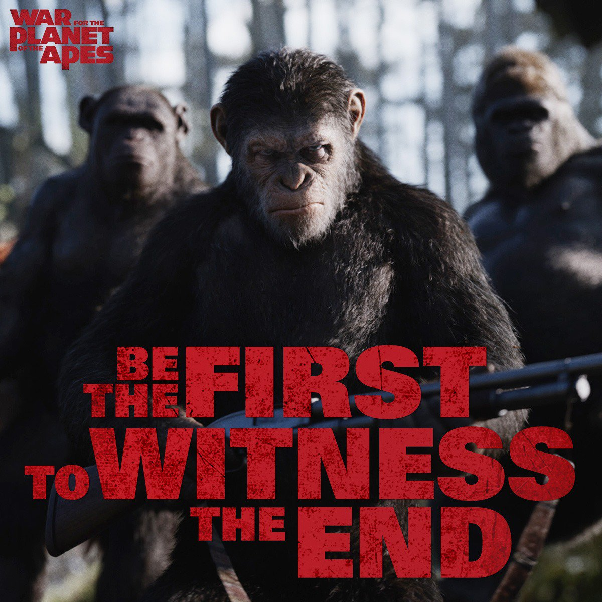 Preview Film War For The Planet Of The Apes 2017 Edwin Dianto New Kid On The Blog