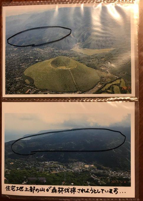 伊豆高原メガソーラー建設予定地。東京ドーム10個分もの森を伐採し、建設予定地の総敷地面積は東京ドーム20個分とのこと。果たしてこれだけ広範囲の森林を犠牲にしてまでメガソーラーは必要なのだろうか。