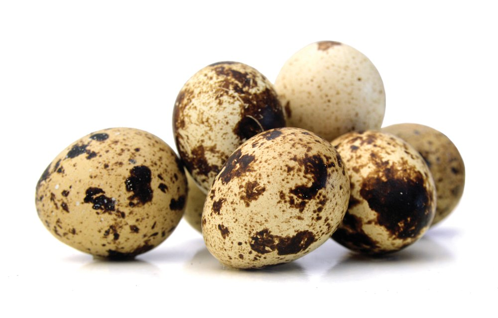 Eggshell pigments may trap pollutants &amp; act as physiological chemoprotection #oology #ornithology @AukJournal  http:// americanornithologypubs.org/doi/abs/10.164 2/AUK-17-7.1 &nbsp; … <br>http://pic.twitter.com/XT61p5VztK