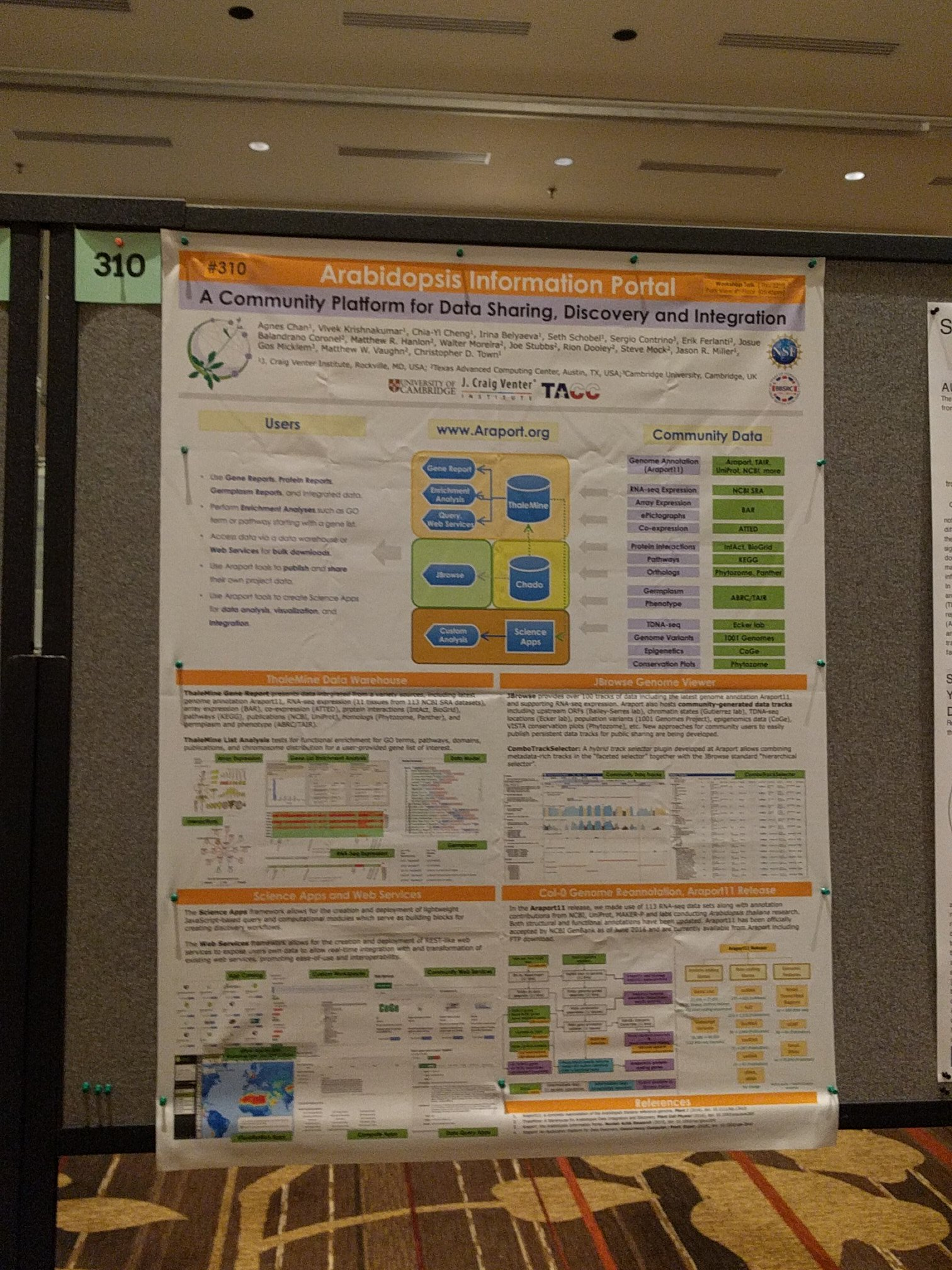 @Araport poster (#310) is up in the Grand Ballroom. Come check it out! #bioinformatics #databases #ICAR2017 https://t.co/apbk7r0D7q