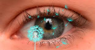 #AllAboutVision.com has some helpful tips for #itchyeyes from #summerflowers #summerissues #contacts  http://www. allaboutvision.com/conditions/all ergies.htm &nbsp; … <br>http://pic.twitter.com/kF0ghtclka