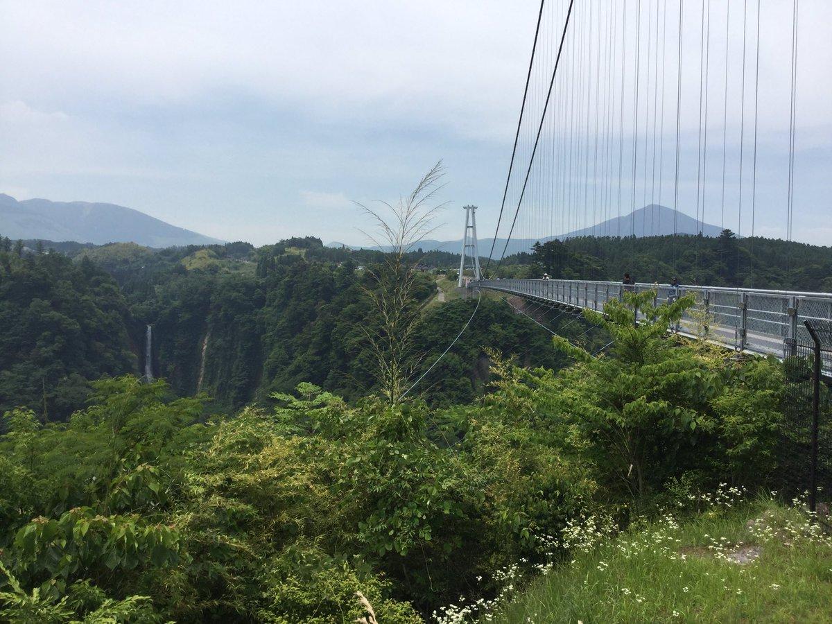 で、これ。日本一長い吊り橋。ドキドキが止まらなくて握りしめてた麦茶は恋の味がした。そうかこれが吊り橋効果か