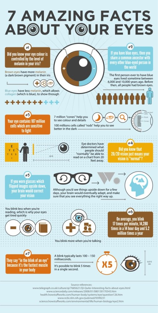7 Amazing Facts about Your Eyes #eyecare <br>http://pic.twitter.com/p54Lt2juXS