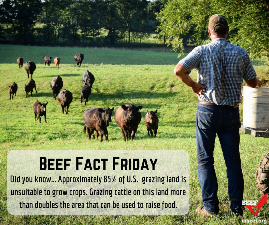 #FunFact: Grazing cattle on land that is unsuitable for growing crops more than doubles the area that can be used to raise food! #iabeef<br>http://pic.twitter.com/SCYoid4IZq