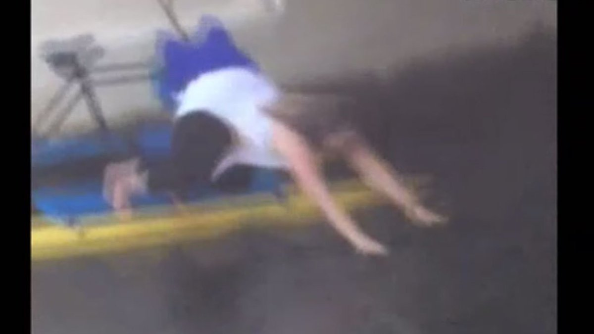 WATCH: Tourist saves cat that fell into Hillsborough River