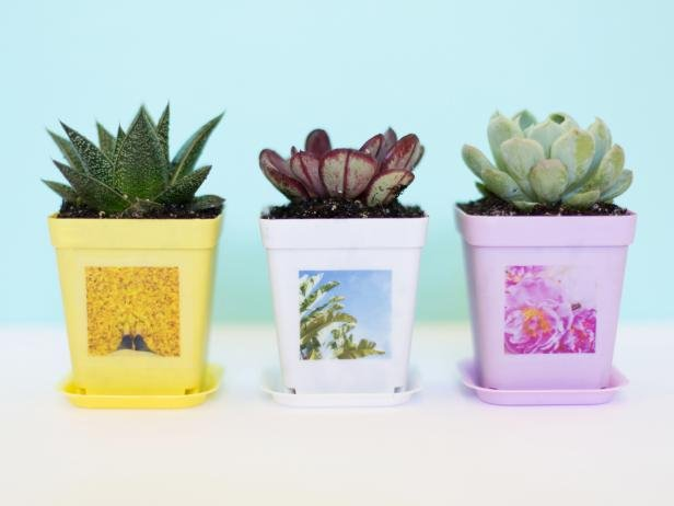 15 DIY Planters You Can Make in One Hour (or Less!)