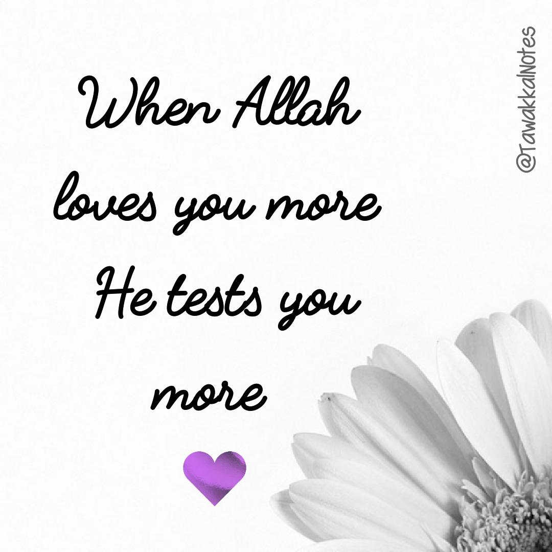 test to see if he loves you