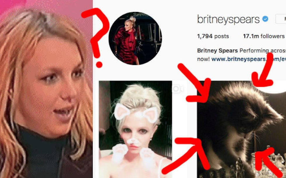 Here's *the secret* to how Britney Spears finds her Instagram pictures bzfd.it/2tH0Wwv