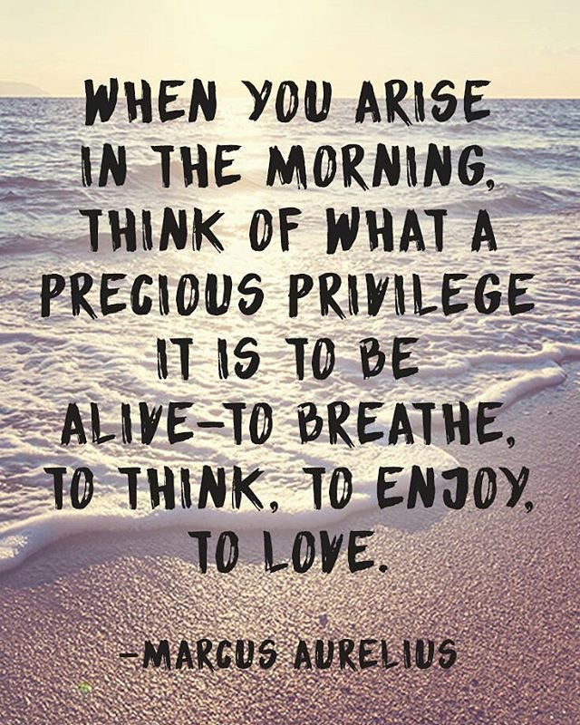 Journaling gratitude every morning changes the frame in which you see your life.  #Gratitude #InspiringExcellence <br>http://pic.twitter.com/iLhZuwslBU