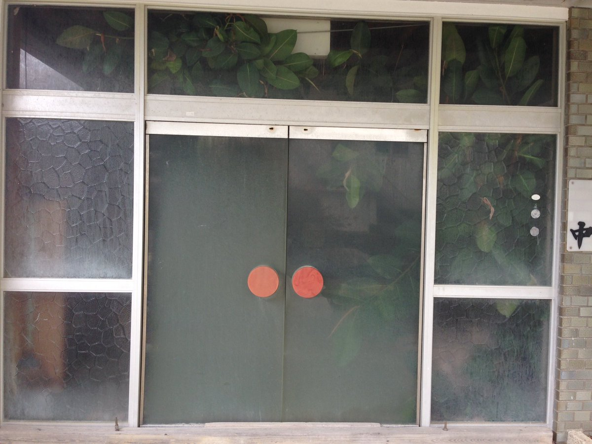 廃業した旅館の中で鉢植えがギチギチと育っている様子