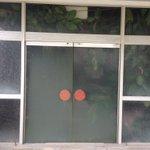 廃業した旅館の中で鉢植えがギチギチと育っている様子 pic.twitter.com/np3e0huh…