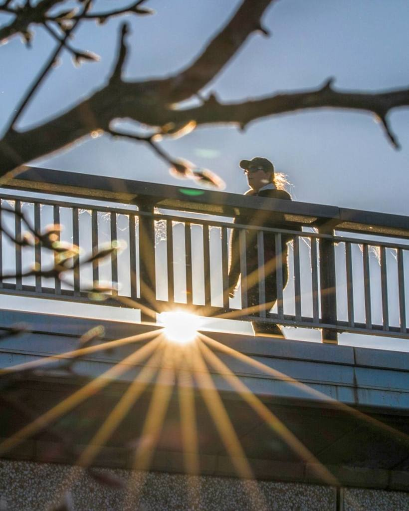 Winter sunset walking hour is upon us. Hello Tuesday! . . . #sunset #winterwonderland #visitcanberra #seeaustralia  http:// ift.tt/2suFVWy  &nbsp;  <br>http://pic.twitter.com/BJ97L2Ie4s
