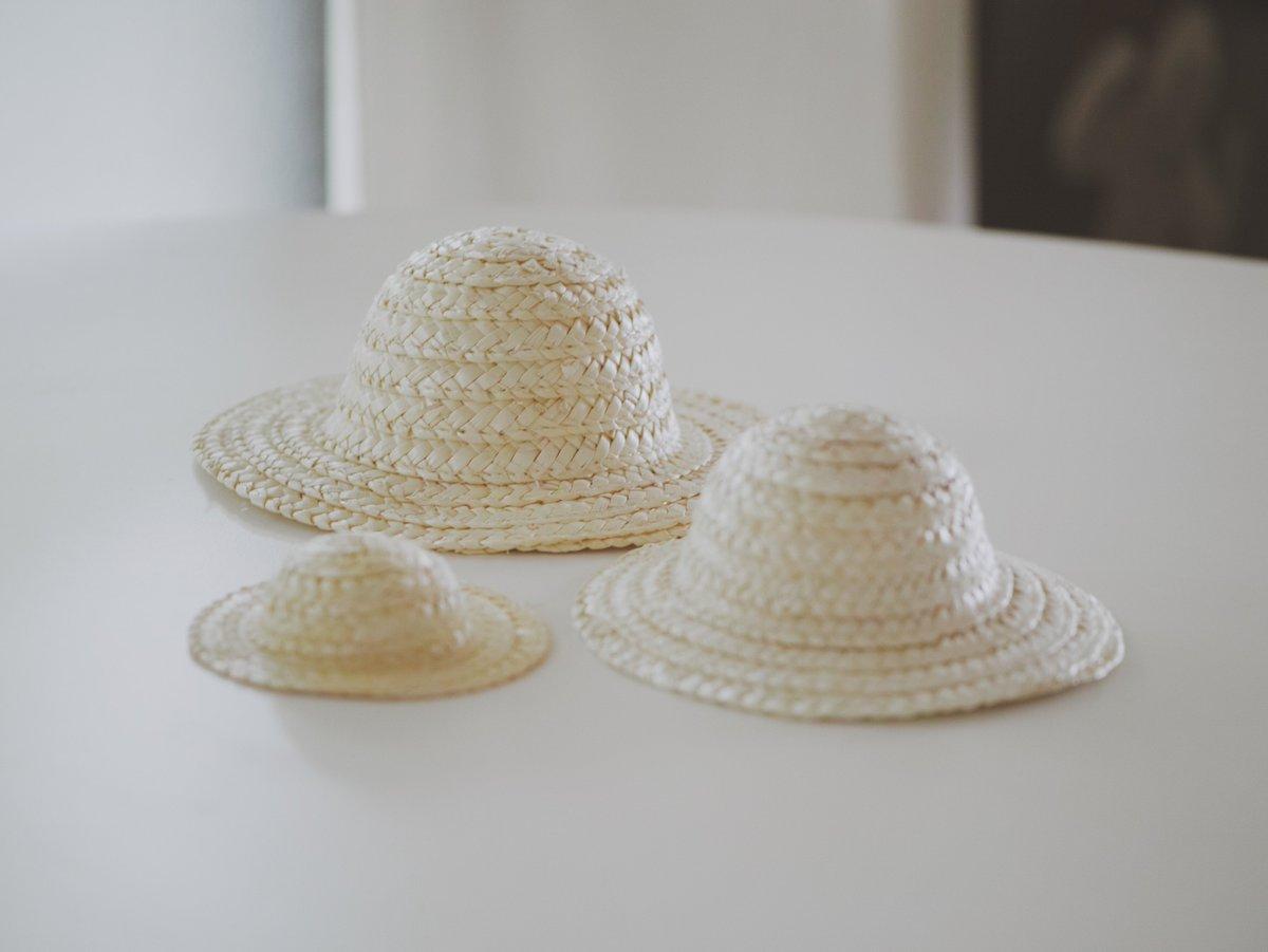 最近は小さい麦わら帽子を手に入れたので色々なものにかぶせて遊んでいます https://t.co/3RJbTgWytM
