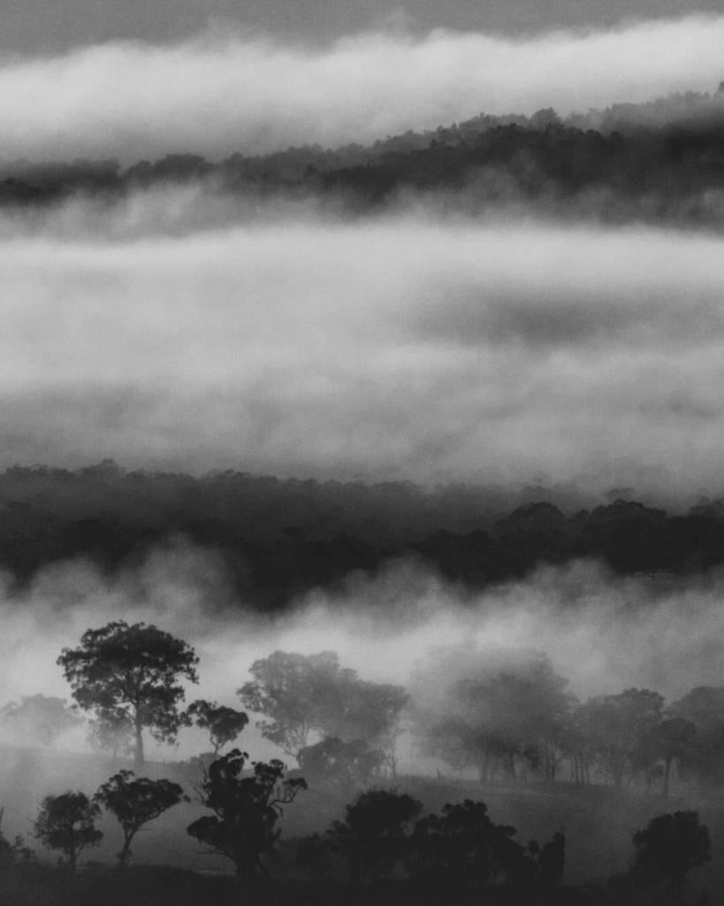 Looking forward to another foggy start to the morning ... Good Night . . . #fog #winterhike #winterwonderland #vis…  http:// ift.tt/2sOew4F  &nbsp;  <br>http://pic.twitter.com/0p2ac631l3