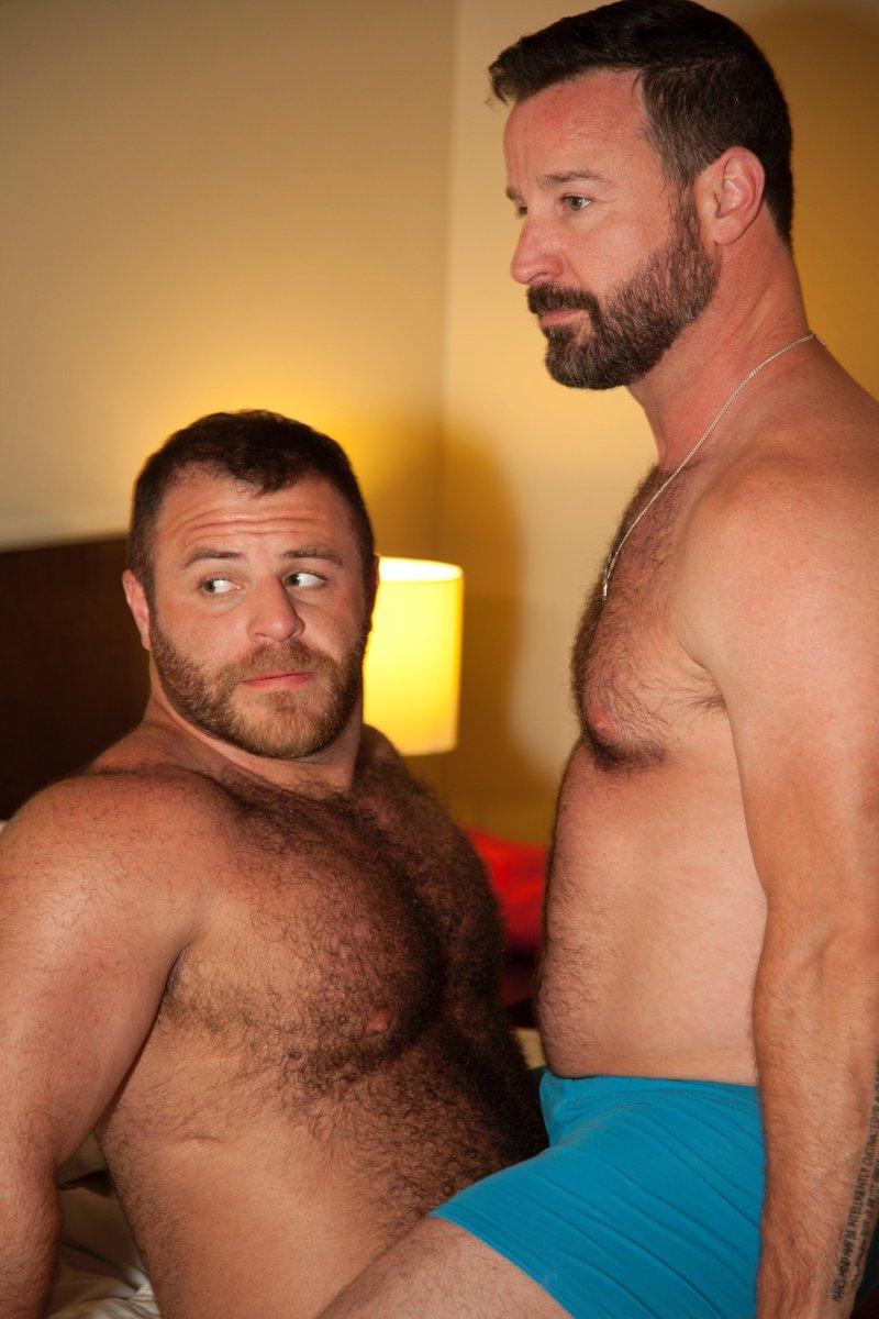 Gay bear backing #5