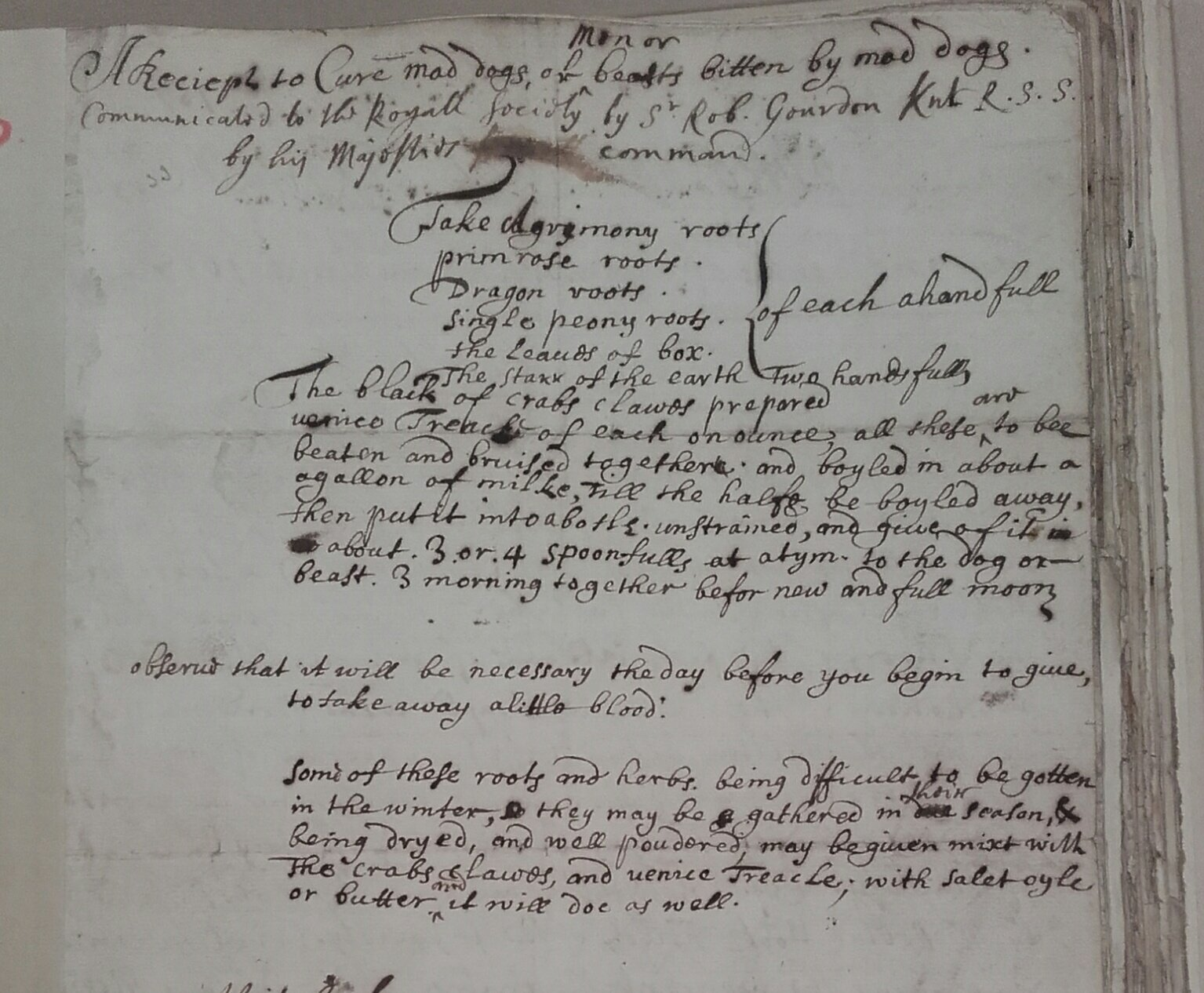 "Another #recipe from the #physick volume Cl.P\14i ""to cure mad dogs or men or beasts bitten by mad dogs"" @royalsociety #recipesconf https://t.co/vIjCbGzQWH"