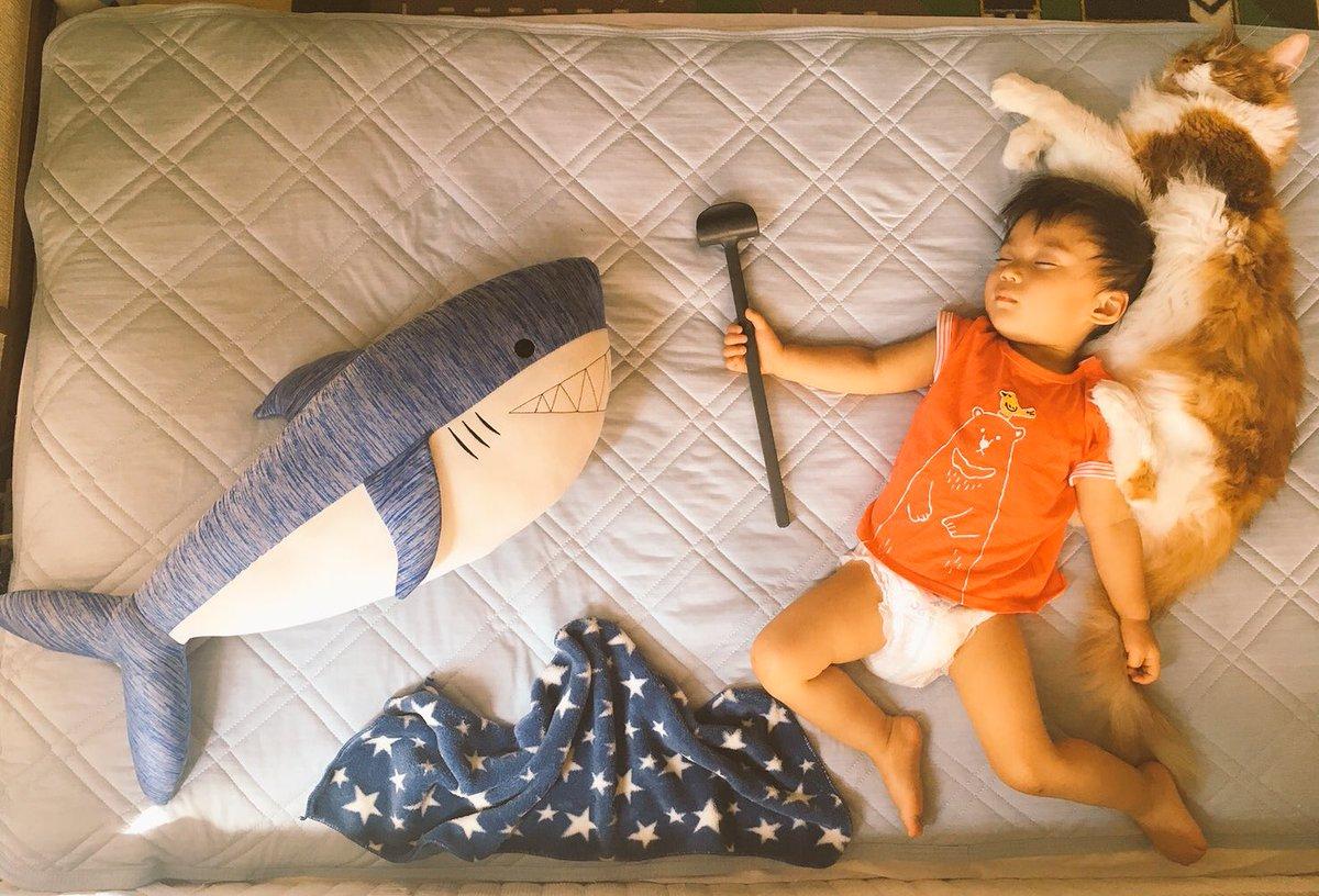 うちの息子が古代壁画みたいになってる 猫神のスタンドも発動して海の王と戦ってる