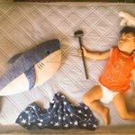 うちの息子が古代壁画みたいになってる猫神のスタンドも発動して海の王と戦ってる pic.twitter…
