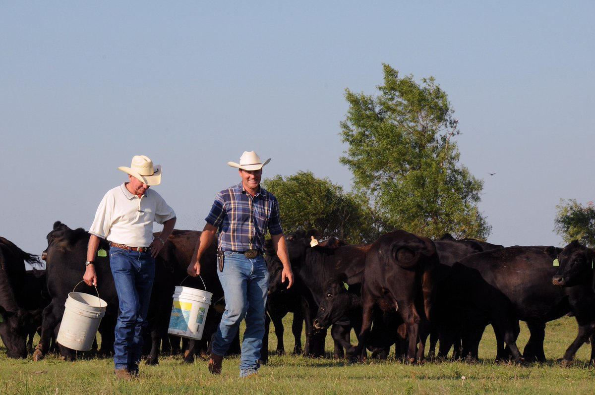 USDA Seeks Nominations to Cattlemen's Beef Promotion and Research Boar...