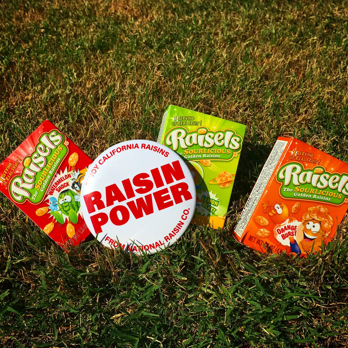 Raisels On Twitter Raisels The Sourlicious Snack Powering Your