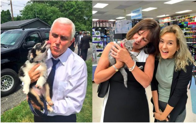 @VP Mike #Pence Adds New Puppy And Kitten To His Cuddle Cabinet