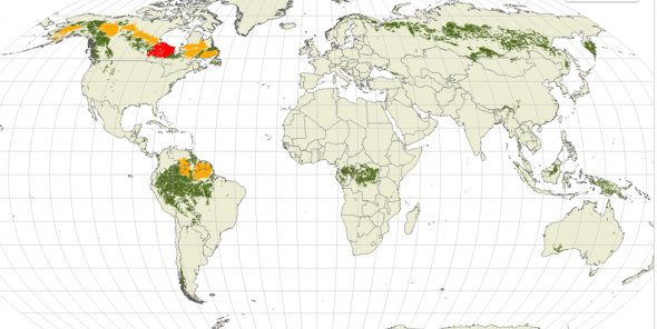 The world should NOT forget: #Boreal #forests store more #carbon than ANY other terrestrial ecosystem on earth  http:// ow.ly/hc6M30cd1Z6  &nbsp;  <br>http://pic.twitter.com/JuZJYCSgG4