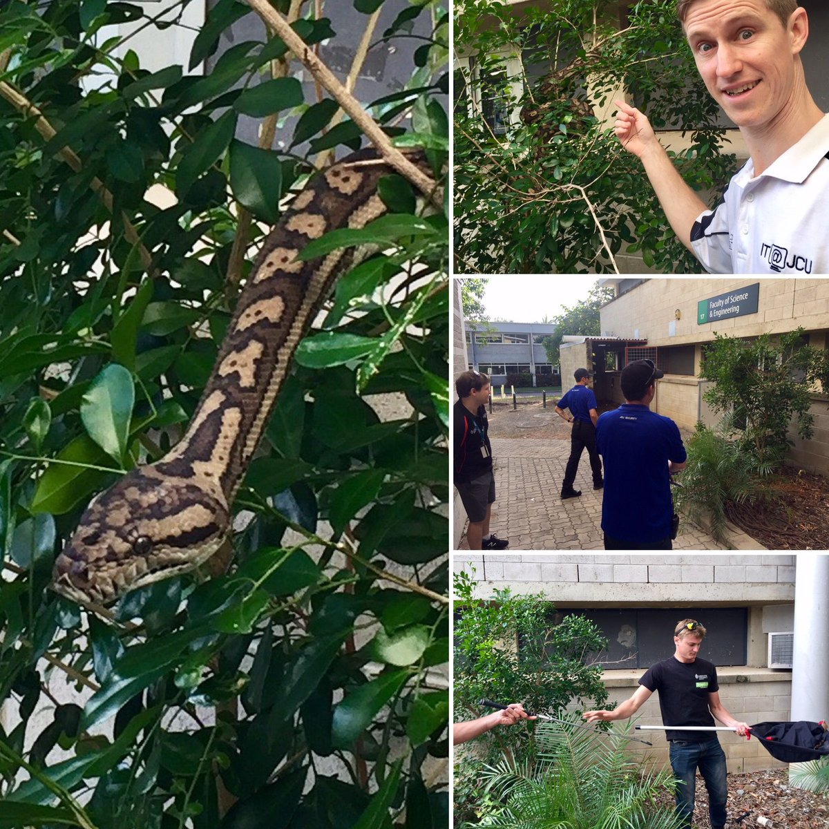 At @jcu we take teaching authentic #Python #programming seriously. #tropics #Townsville #townsvilleshines #eco #sustainability @tsv_bulletin<br>http://pic.twitter.com/GOgRIi3YTF